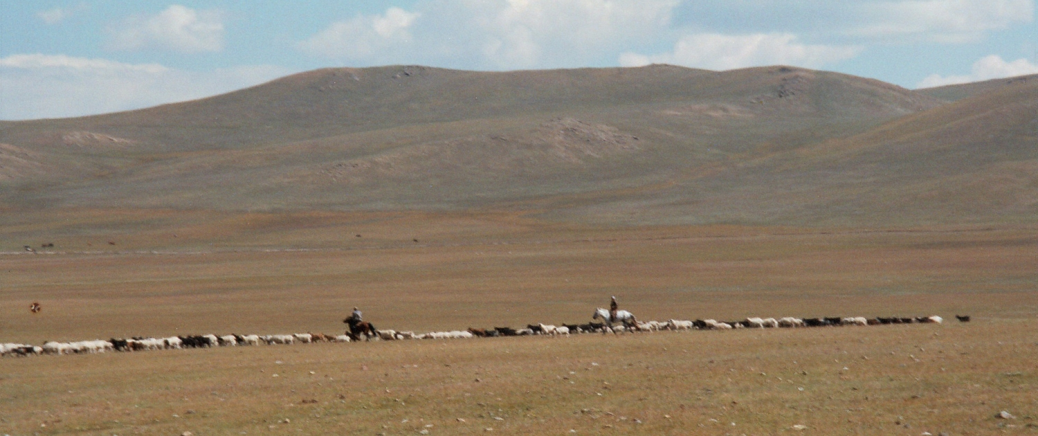 Singing Cowboys and the Mongolian Steppe - Re-imagining Migration